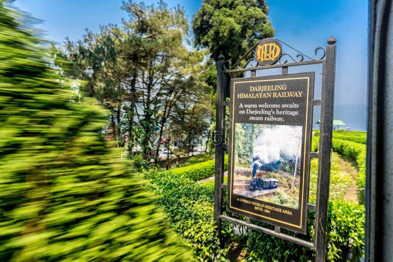Darjeelng, India royalty free stock photo