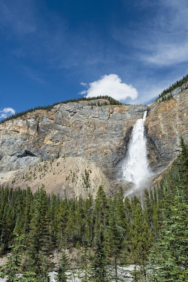 Takkakaw понижается в парк Banff Yoho стоковые изображения rf