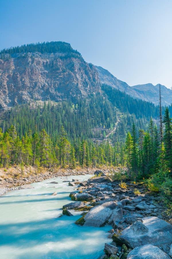 Takkakaw Falls, CANADA, Yoho National Park, British Columbia, Canada stock photography