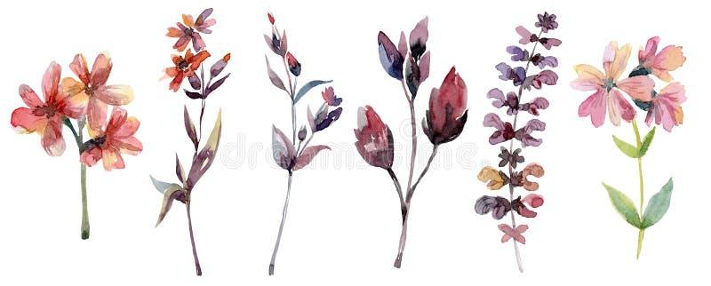 Takken met bladeren en bloemen, bloemenreeks royalty-vrije illustratie