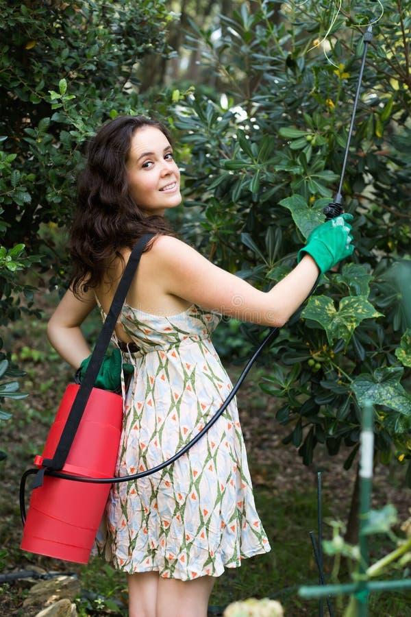 Takken van de vrouwen de bespuitende boom royalty-vrije stock foto