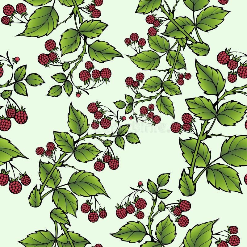 Takken van frambozen naadloos patroon, bessenachtergrond Tekeningsfruit, grafische kunst, beeldverhaal Voor het ontwerp vector illustratie