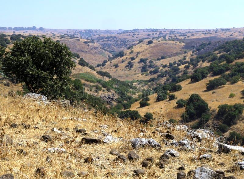 Tal-Ansicht - Yehudiya-Nebenfluss in Israel stockfotos