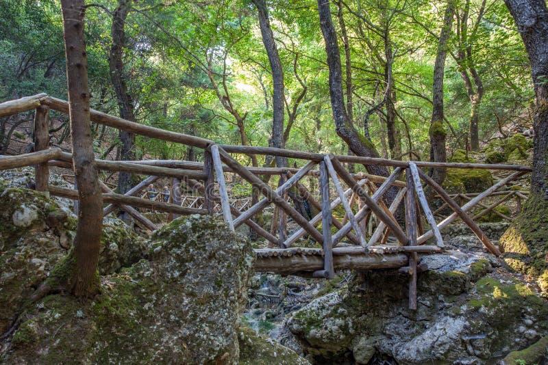 Tal der Schmetterlinge Peta Loudhes Rhodes Greece Europe stockbild