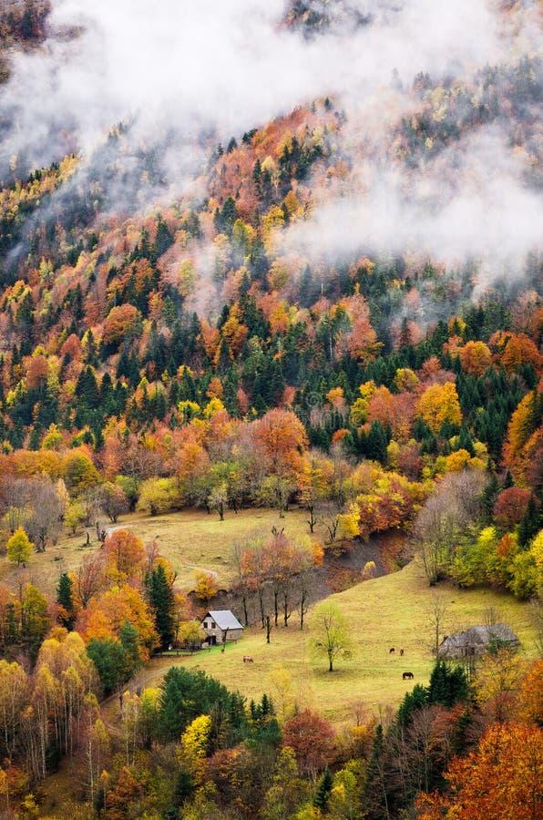 Tal im Herbst stockfotos