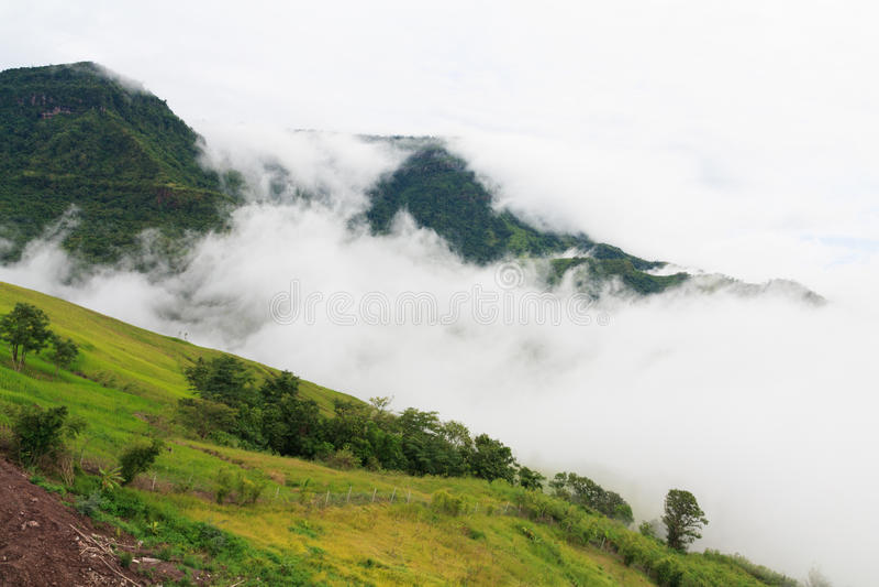 Tal im Nebel stockbilder