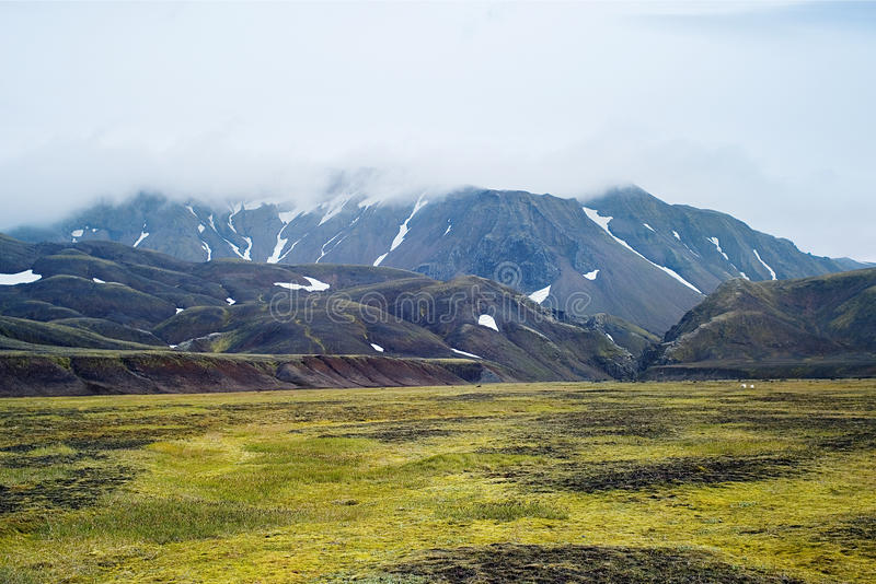 Tal-Nationalpark Landmannalaugar stockfoto