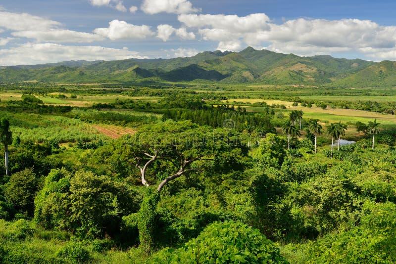 Tal Valle de Los Ingenios nahe Trinidad-Stadt in Kuba stockfotografie