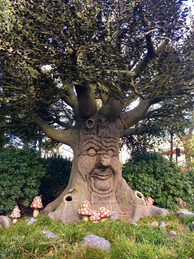 Talande lyckligt träd som ett begrepp av grön fred felik tree royaltyfri bild