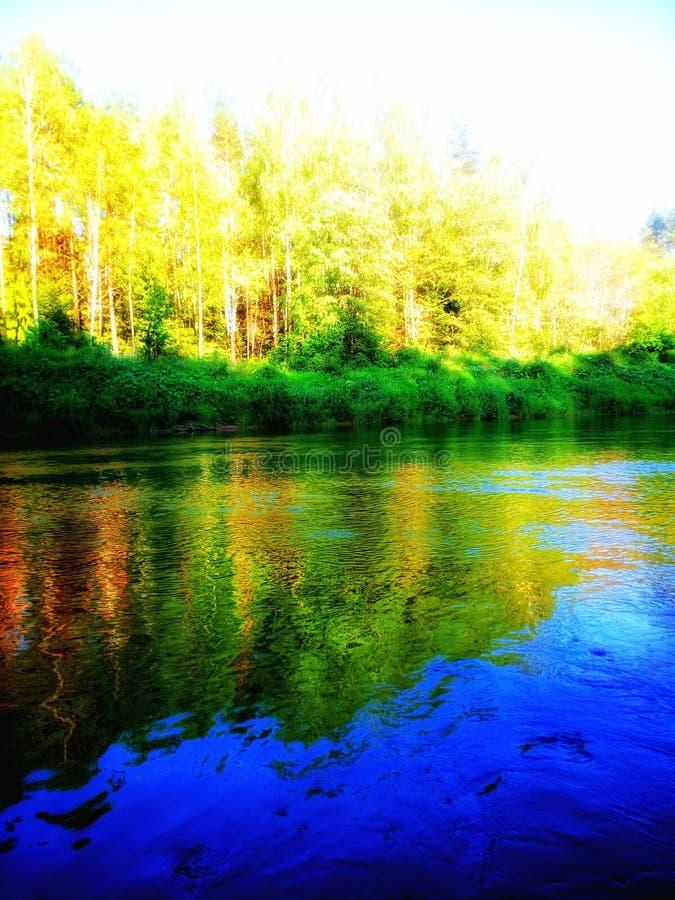 talar stillness royaltyfri foto