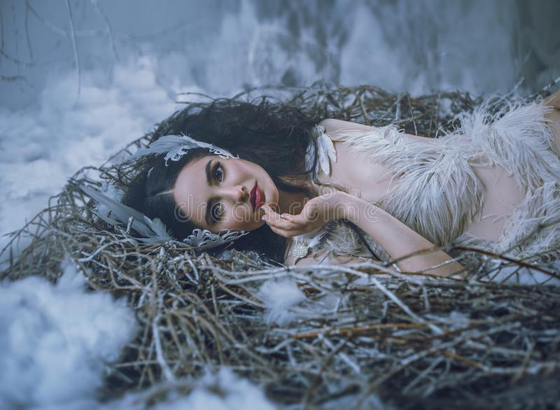 The Tale of Swan Lake. The girl bird lies in the nest, and is smiling. A fairy-tale image of a queen of swans, a suit royalty free stock images