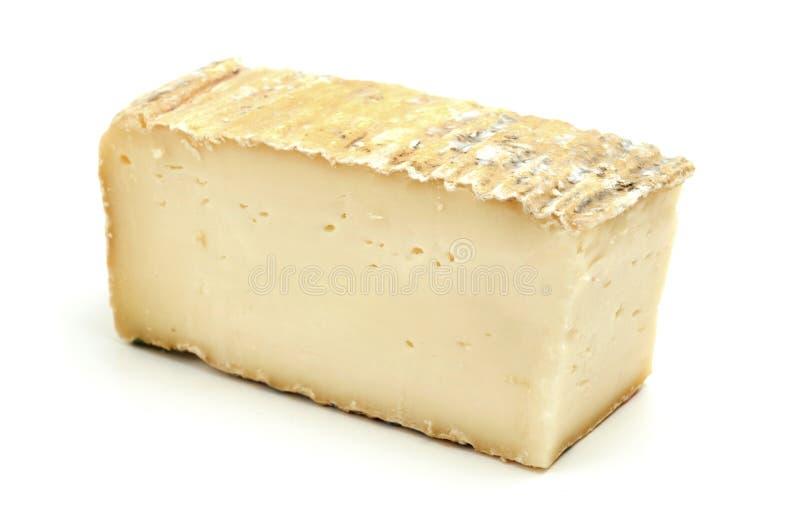 Taleggio τυρί στοκ εικόνες