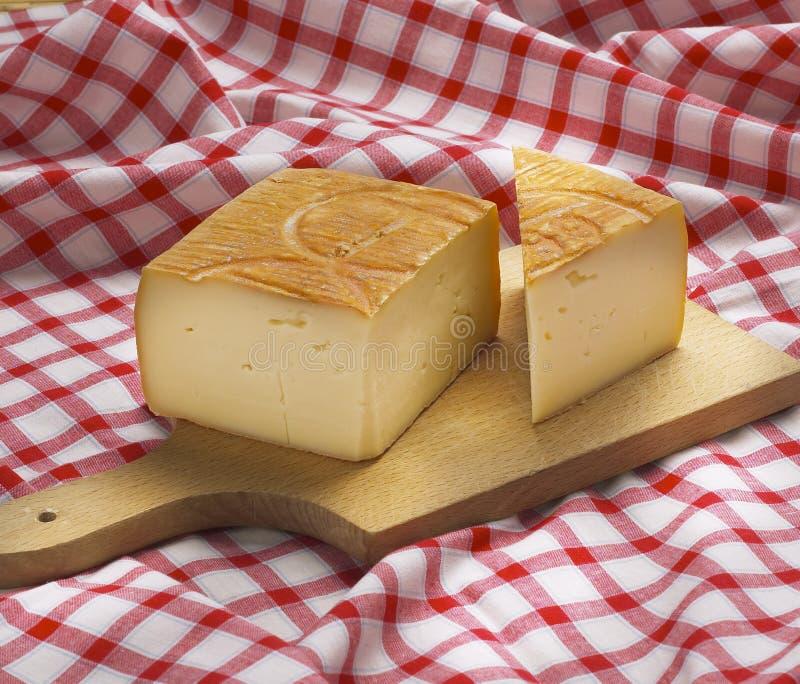 Taleggio italiano típico do queijo fotografia de stock