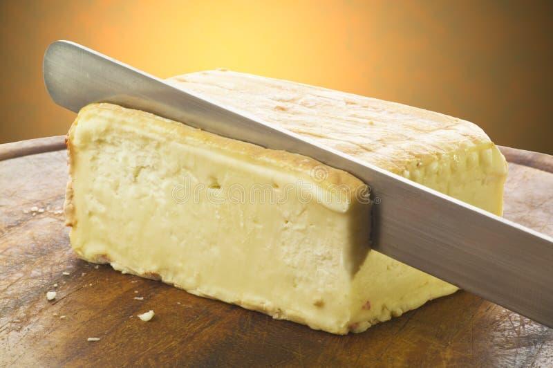 Taleggio italiano típico do queijo foto de stock