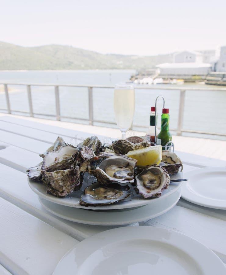 Talerz świeże otwarte ostrygi i szkło szampan na białym stole z widokiem oceanu, selekcyjna ostrość zdjęcia royalty free