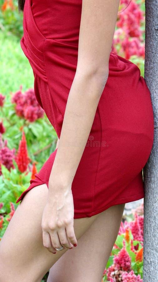 Talia Piękna kobieta fotografia stock