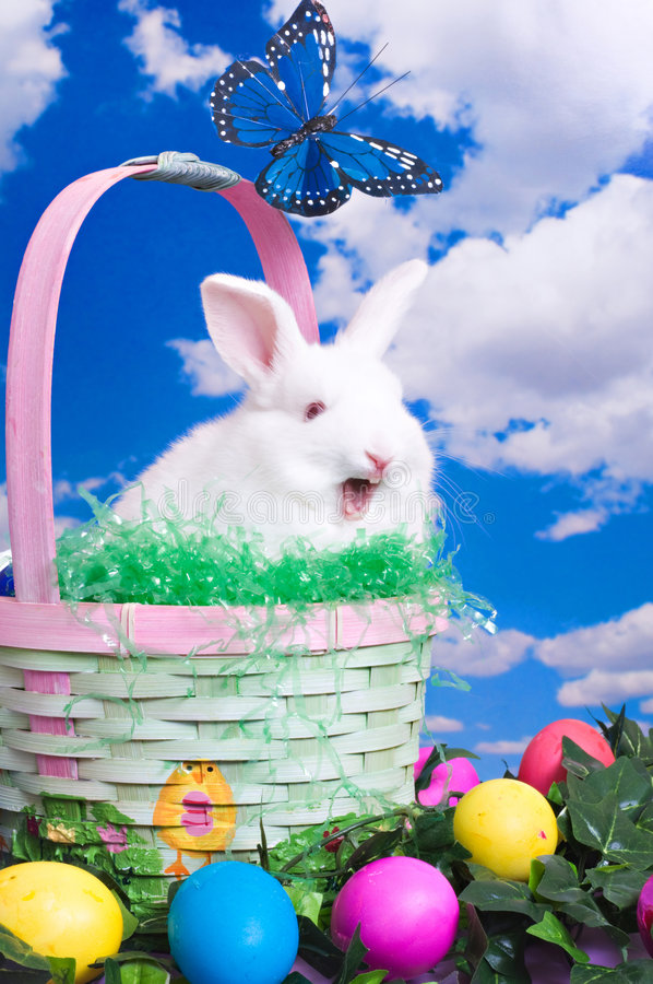 Talking Easter Bunny royalty free stock photo