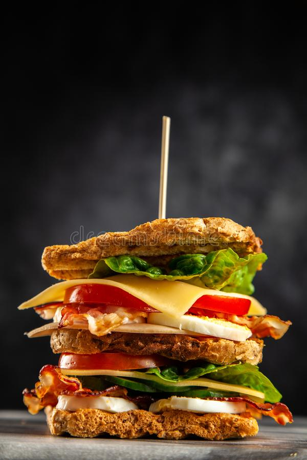 Tall club sandwich. With eggs, turkey and bacon stock photography