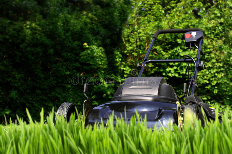 Download Tall grass stock image. Image of blades, chore, equipment - 12497581
