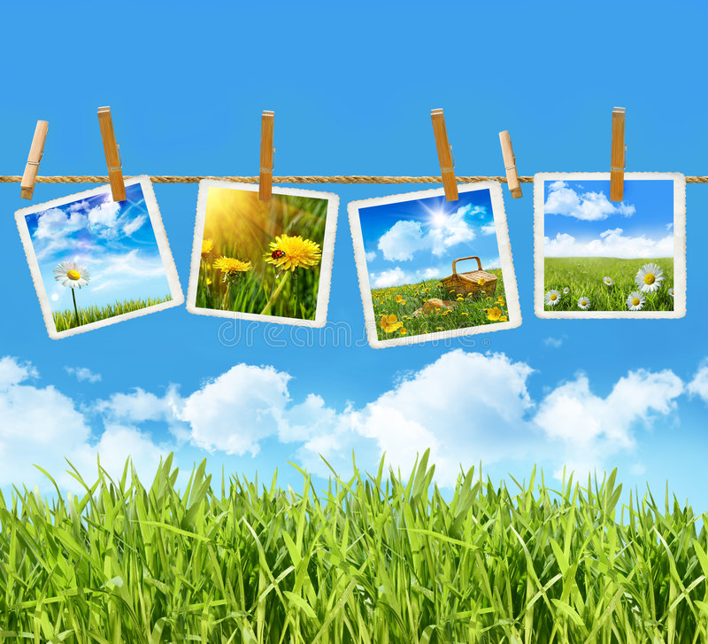 Free Tall Grass With Four Pictures On Clothesline Royalty Free Stock Image - 9039236