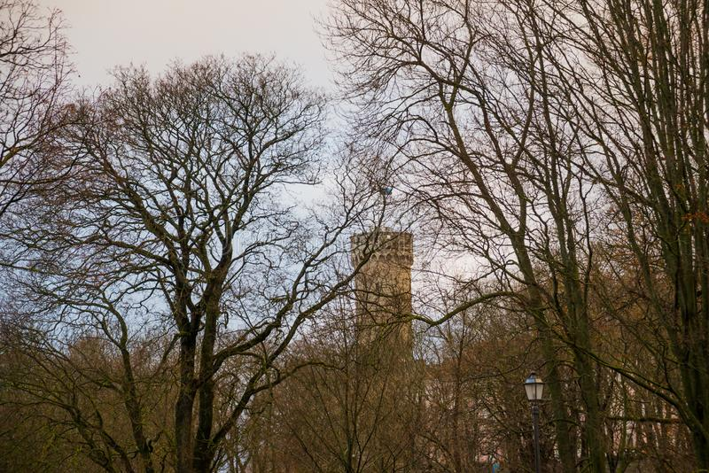 Tall Hermann tower and Parliament building. Toompea, Governors garden, Tallinn, Estonia royalty free stock image