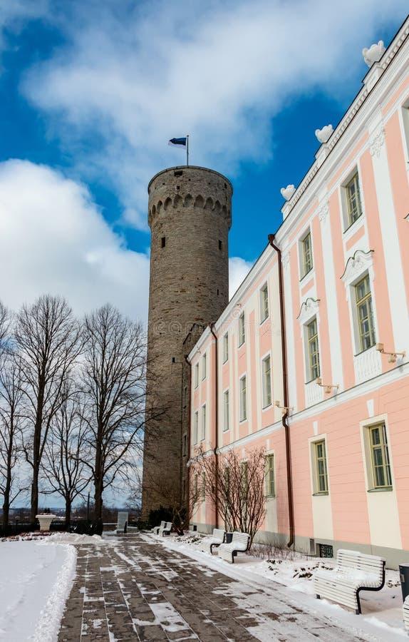 Tall Hermann tower or Pikk Hermann in Tallinn stock photos