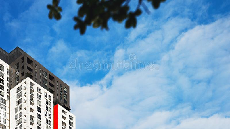 Tall modern buildings royalty free stock image
