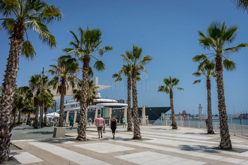 Tall palm trees in front a white lighthouse at Malagueta beach i. N Malaga, Spain, Europe on a bright summer day with clear skies royalty free stock images