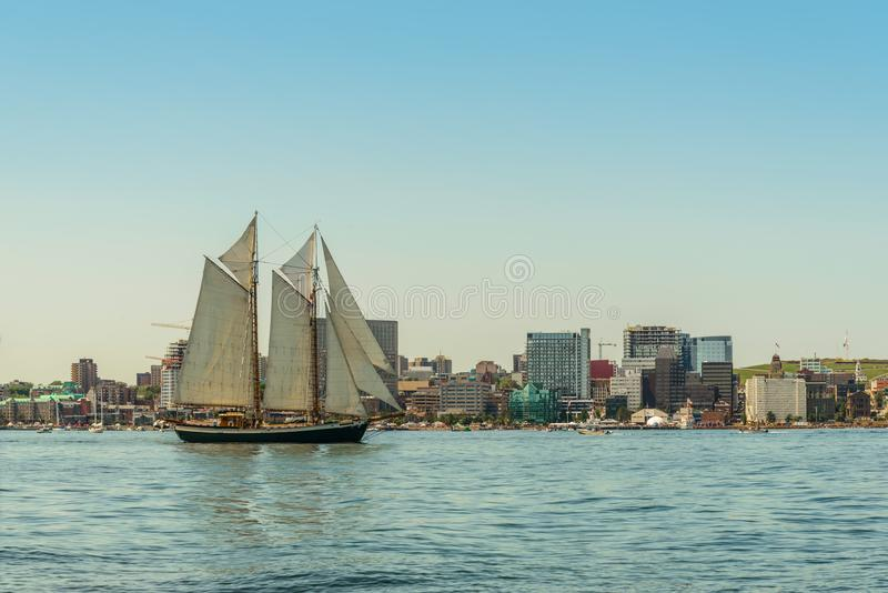 Tall ship in the harbour with Halifax downtown skyline on a sunny day royalty free stock images