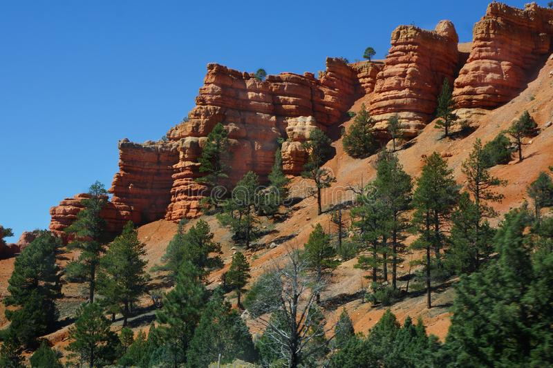 Bryce Canyon from Valley Floor royalty free stock image