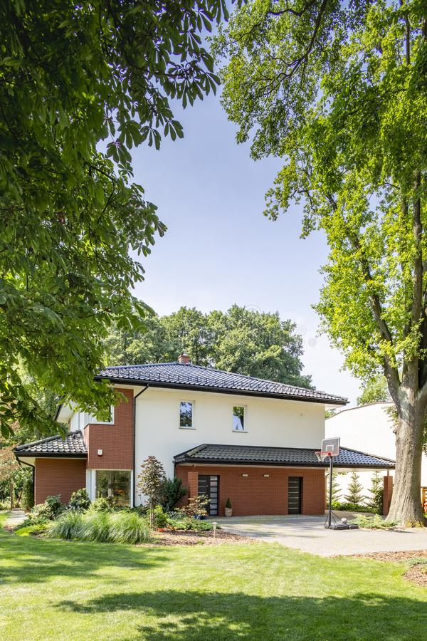 Trees in a garden of a modern house. Real photo. Tall trees in a garden of a modern house. Real photo royalty free stock image