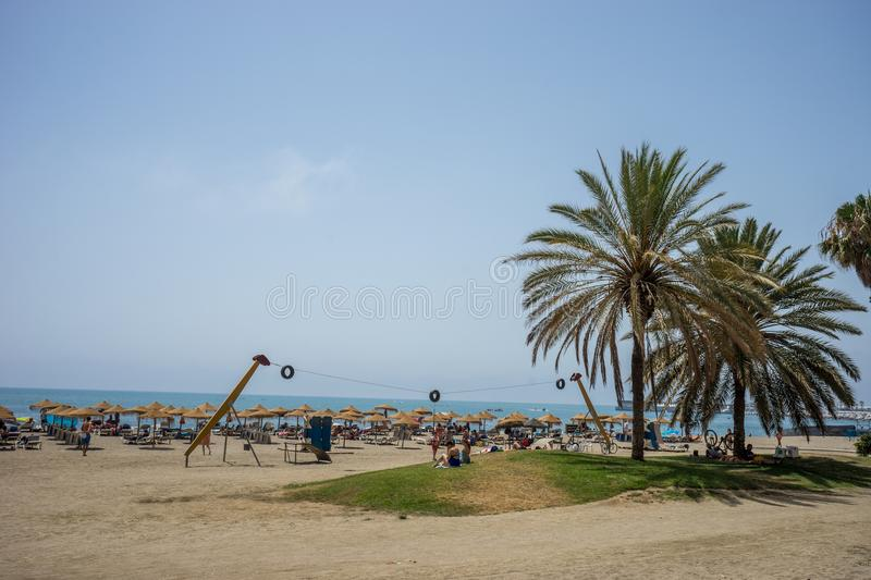 Tall twin palm trees along the Malagueta beach with volleyball c. Ourt in the background in Malaga, Spain, Europe on a summer day with clear skies stock image