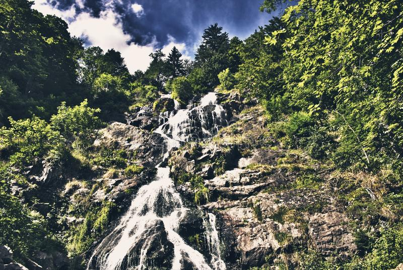 Waterfall blackforest Germany stock images