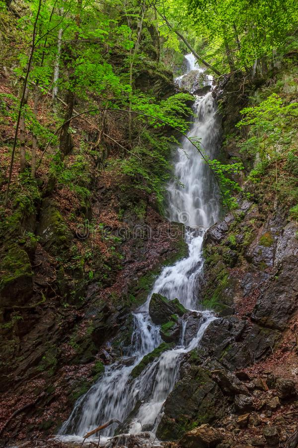 Tall waterfall in the mountains of Serbia royalty free stock images