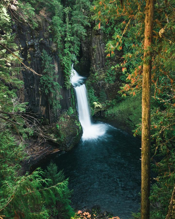 A tall waterfall pours over the cliffs. Edge in the mountainous rain forests of Oregon royalty free stock photos