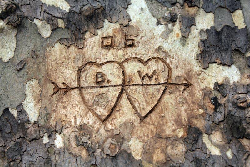 Talla del árbol de amor fotografía de archivo libre de regalías