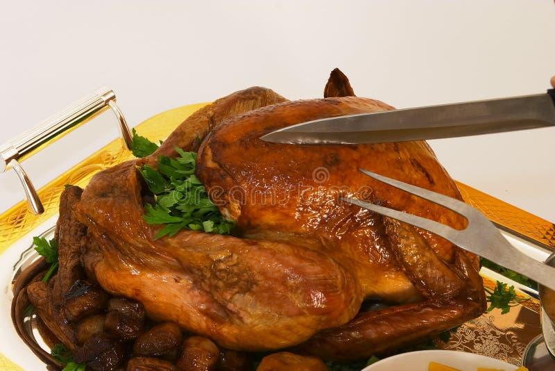 Download Talla del pavo 1 foto de archivo. Imagen de diner, comida - 188390