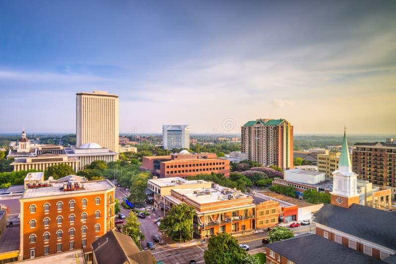Tallahassee, Florida, orizzonte di U.S.A. fotografia stock libera da diritti