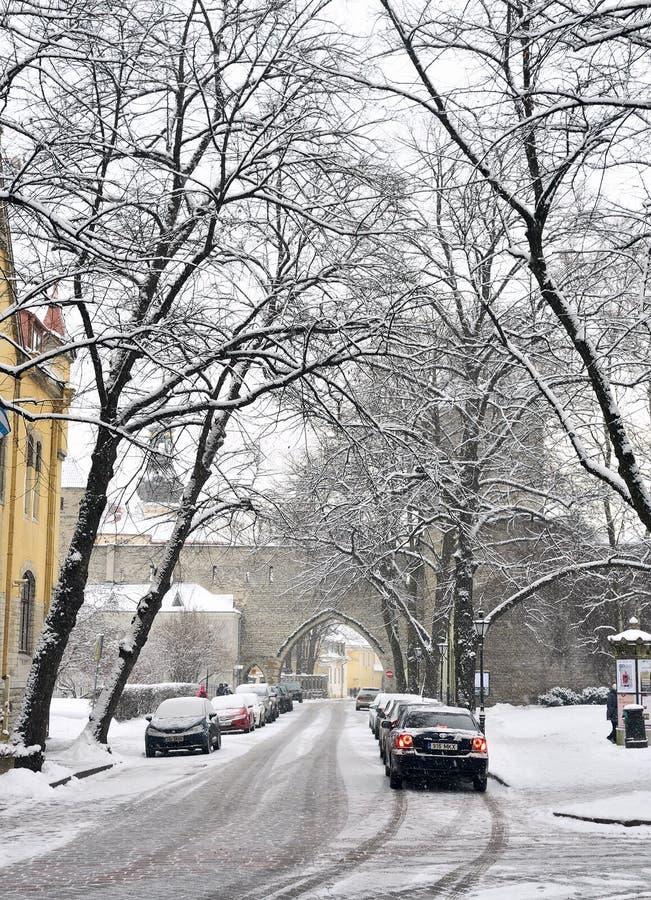 Talliinn, Estonia nell'inverno immagini stock libere da diritti