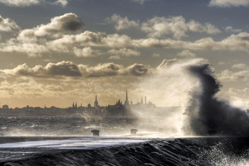 Tallin auf dem Wasser. stockfotografie