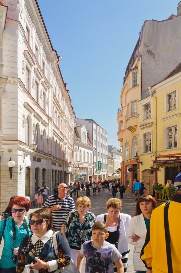 Tallin, Estonia immagine stock libera da diritti