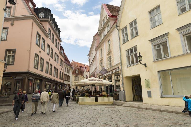Tallin Estonia fotografie stock libere da diritti