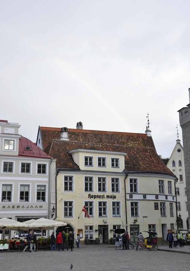 Tallin, o 23 de agosto de 2014 - buldings do centro de Tallin em Estônia imagens de stock royalty free