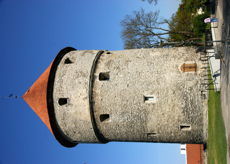 Download Tallin Tower Stock Photo - Image: 20237800