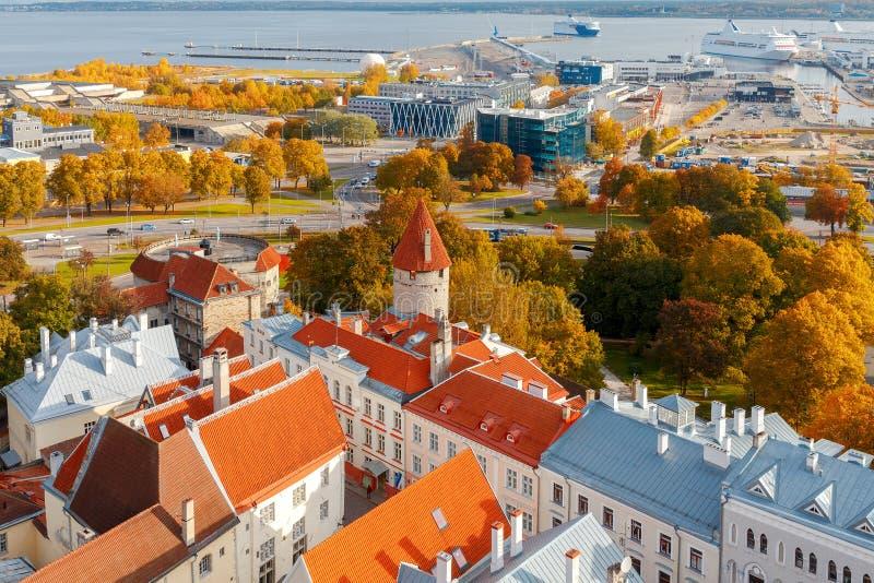 tallinn эстония город старый стоковые изображения rf