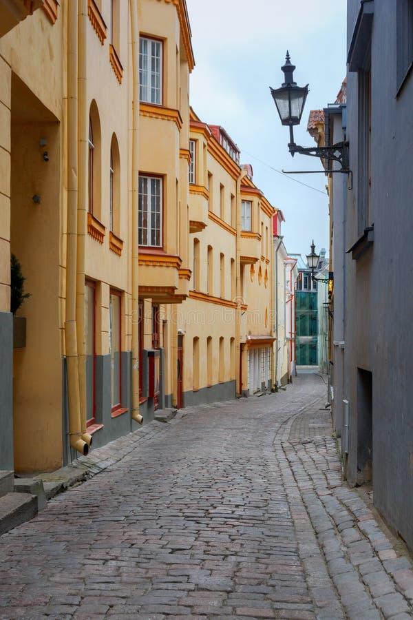 tallinn эстония город старый стоковые изображения