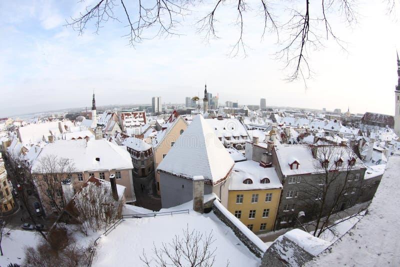 Tallinn fotos de archivo