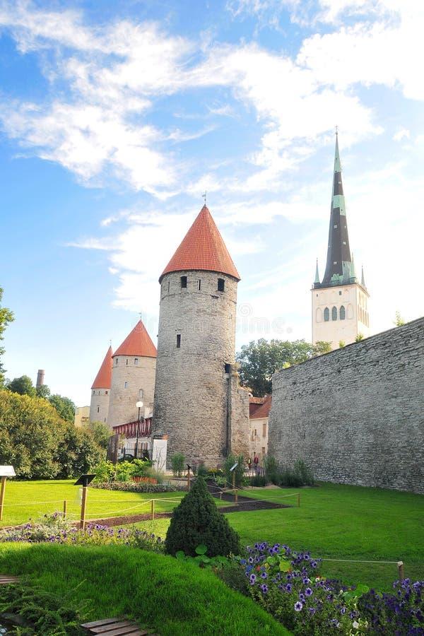 Tallinn fotografia stock