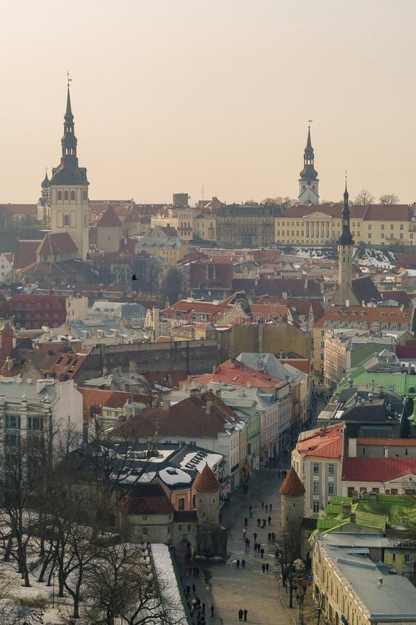 Tallinn Altstadt Winterpanoramasicht mit Burgtürmen und Mauern, Fliesendach und Kathedrale Spire Estland stockfotografie