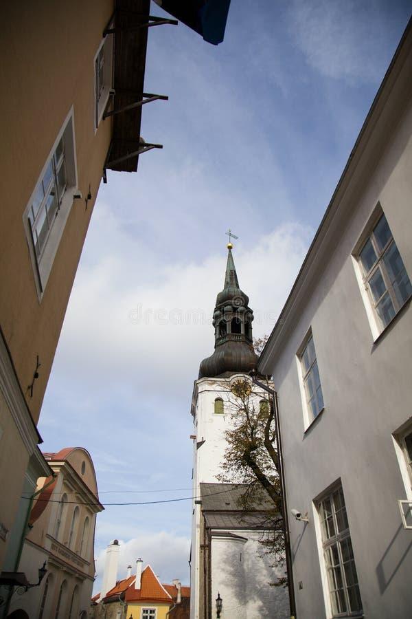 Tallinn, capitale dell'Estonia fotografie stock libere da diritti